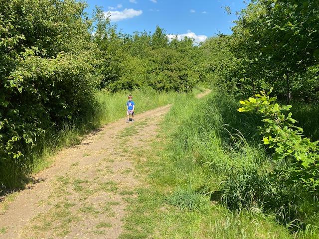 family woodland walk Oxfordshire, woodland walk kids Oxfordshire