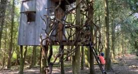 Willowbrook Farm Hampton Gay, woodland tree house, amazing tree houses