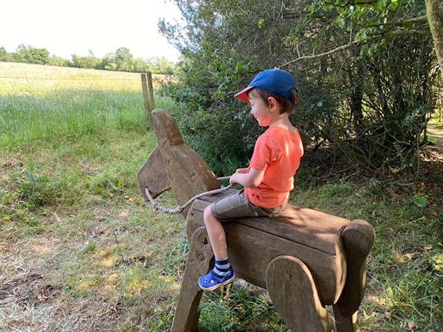 wooden horse, eco play park