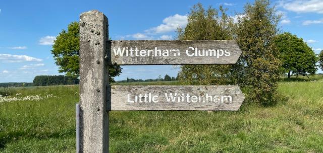 Wittenham Clumps Earth Trust walk