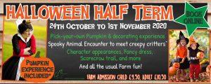 green dragon eco farm, october half term buckinghamshire, october half term events 2020