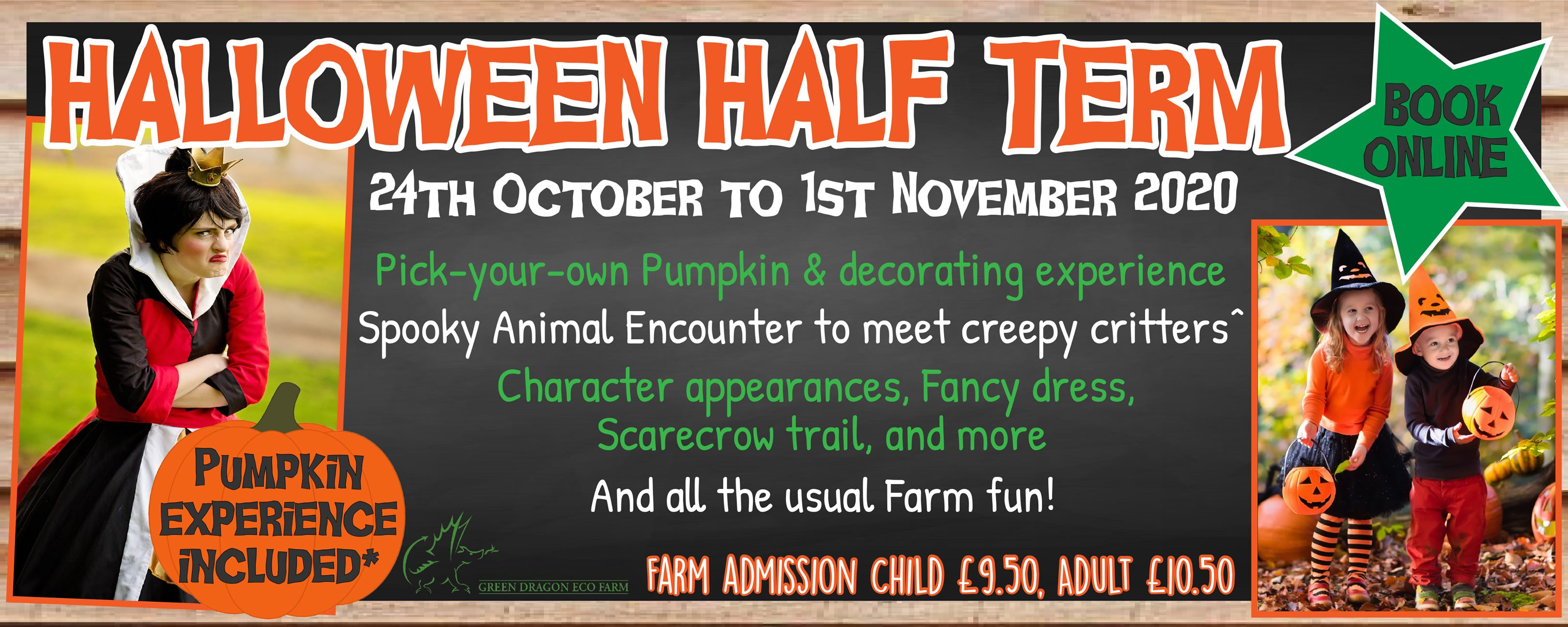 green dragon eco farm, october half term buckinghamshire, october half term events 2020