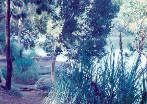 Blue Lake on North Stradbroke