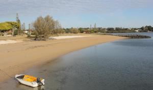 Raby Bay foreshore may get a shark netting enclosure
