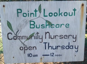 The upgrade planning process neglected to factor in the access requirements of the Point Lookout Bushcare Nursery located along one edge of the park.