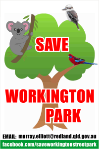 SWAG Flyer Save Workington Park
