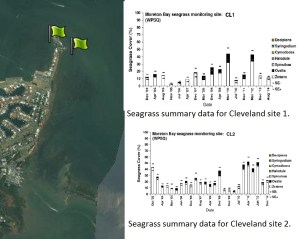 Cleveland, QLD seagrass monitoring sites.