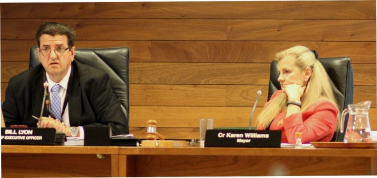 Redland City Council CEO Bill Lyon and Mayor Karen Williams made decisions which have been criticised by the Ombudsman