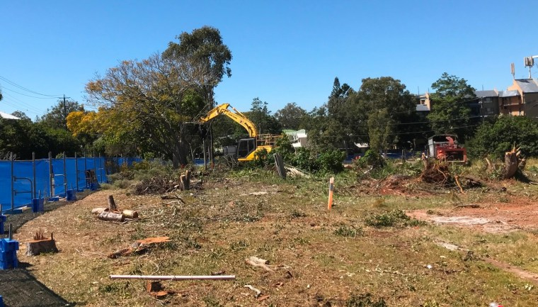 Council approval of destruction of koala habitat questioned by residents