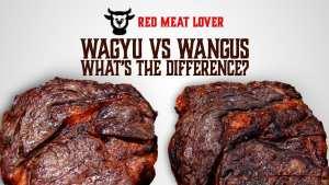 wagyu vs wangus