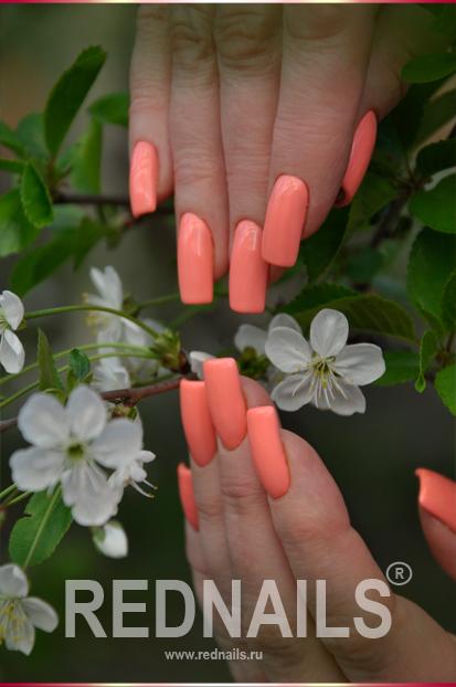 наращивание ногтей биогелем 196 ДУХ СВОБОДЫ