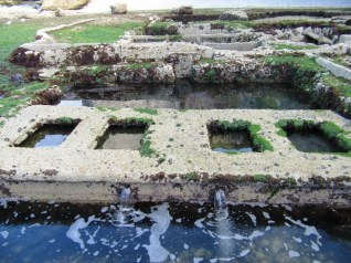 88-low tide