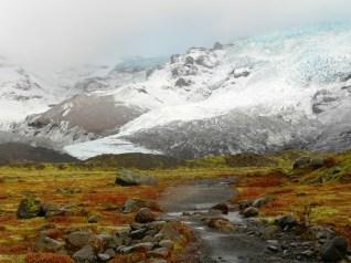 208-glacier-hike