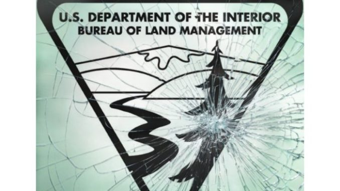 BLM & FBI Exposed or How the Bundy's Got Released