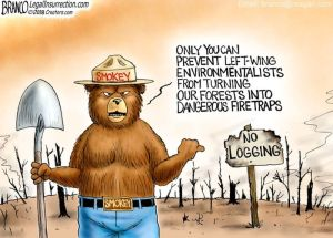 Smokey Has a New Message For Libnut Environmentalists
