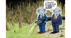Dimm's & RHINOs vs. Patriots & Our Constitution