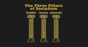 The Dimm's Drive for Power Includes Open Borders and the Failings of Socialism
