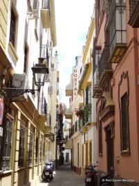 Santa Cruz Seville (8)