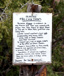 Plague Precautions, Ghost Ranch, NM, April 2008, photo © 2008 by Bob Chrisman. All rights reserved.
