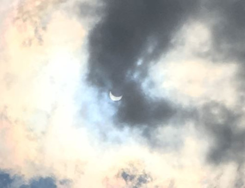 Eclipse Bottom