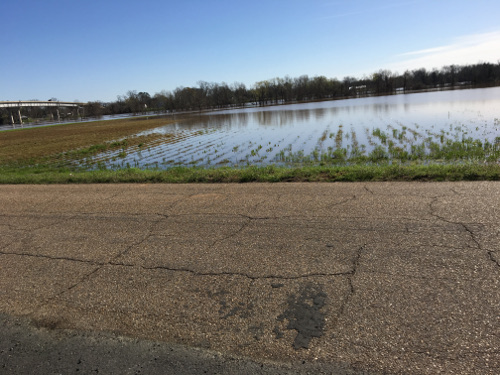 RRPJ-Flooding BOTTOM-18Mar7