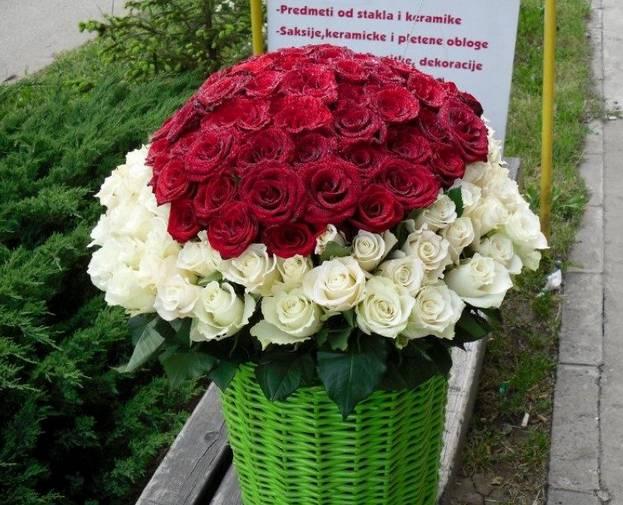 Korpa 101 ruža 8