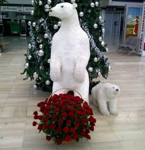 Korpa 101 ruža 14