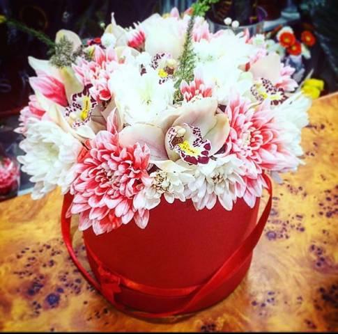 Bele orhideje u crvenoj kutiji