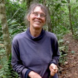 Mimi Foyle