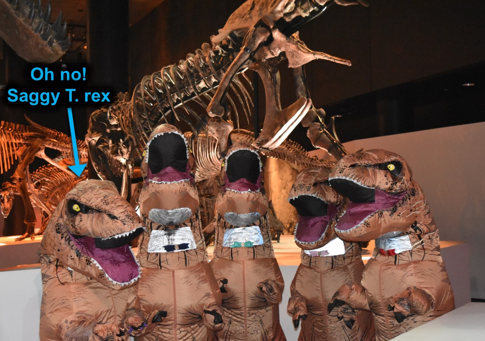 How to Increase Your T  Rex Suit Awesomeness – Red Shoes