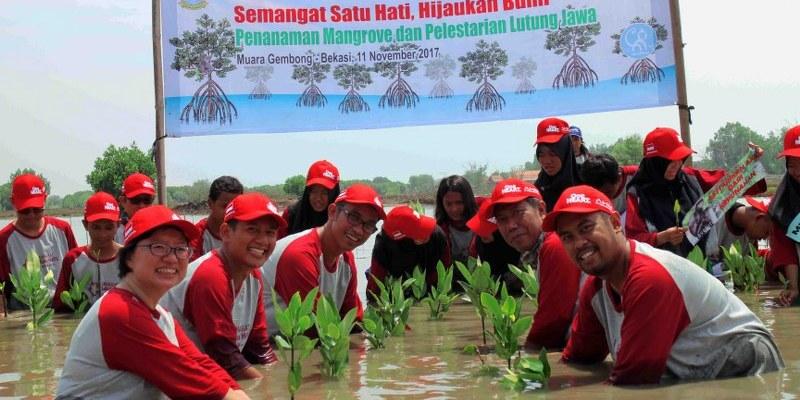Sahabat Satu Hati Dan Save Mugo Tanam Mangrove di Muara Gembong