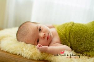 (c) Red Turtle Photography   Takoma Park MD Newborn Photographer