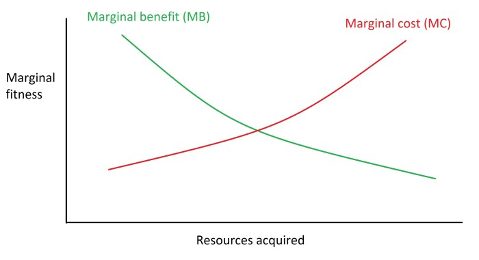 An essay on scarcity marginal benefit and cost