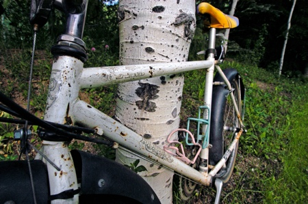 Aspen Town Bike