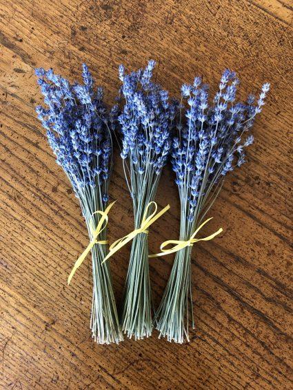 organic dried lavender