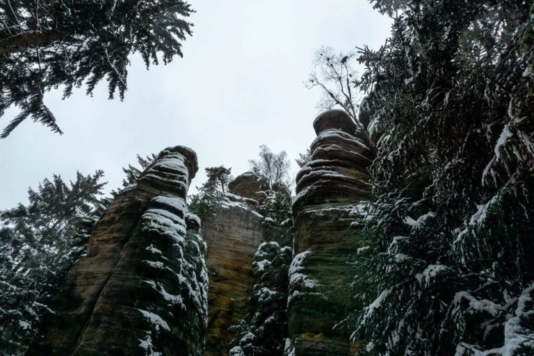 One of our favorite day trips from Prague is Teplice Rocks National Park