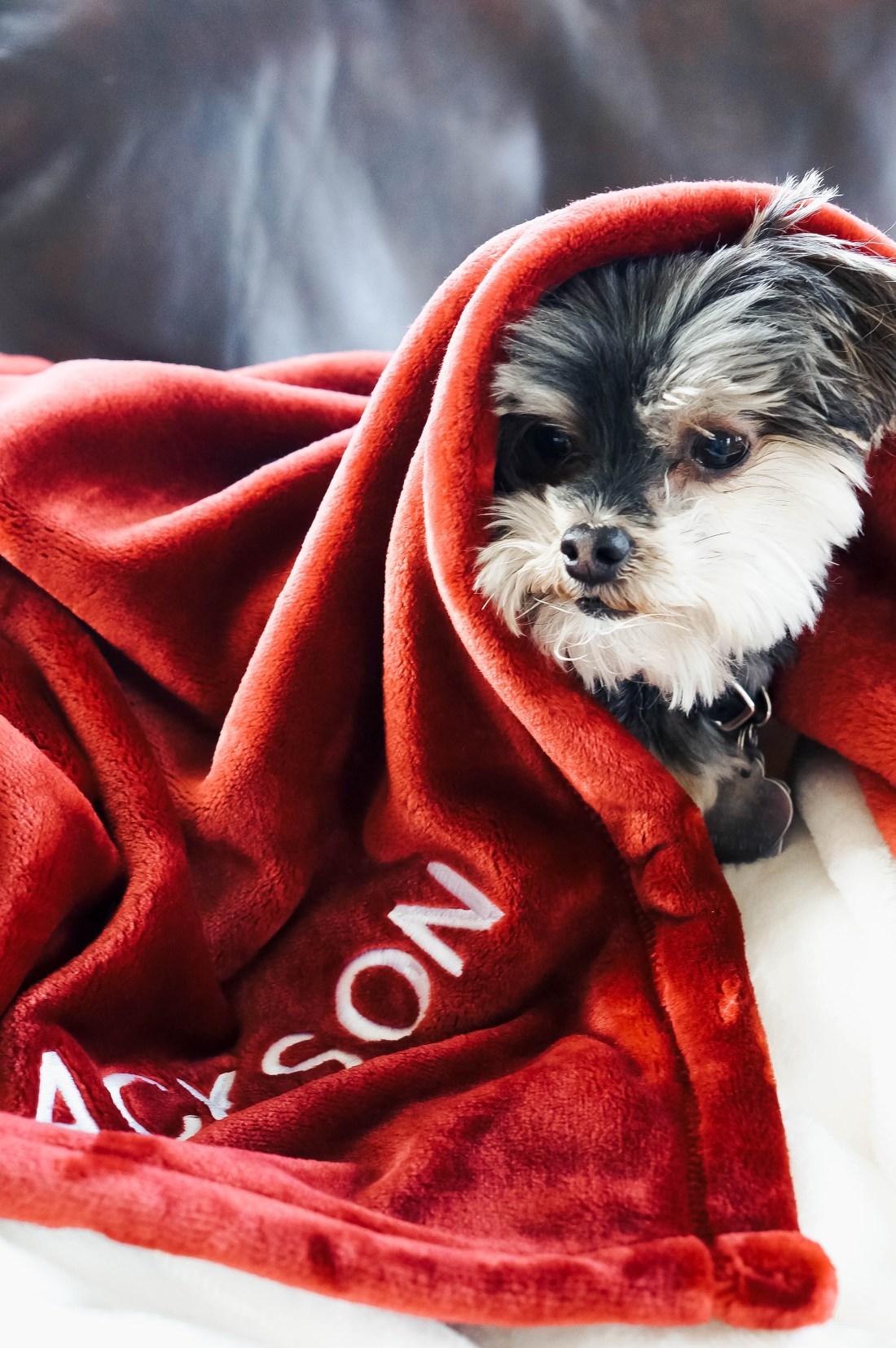 Fleece Pet Blanket Embroidered