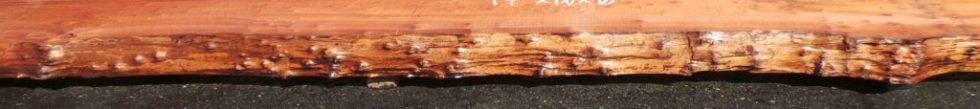 Example of a Live Edge wood slab