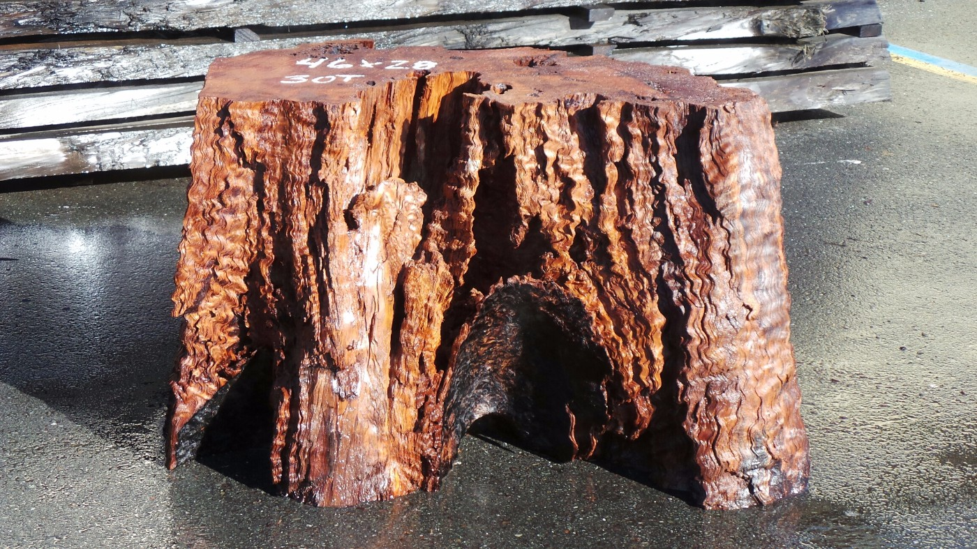 Redwood Base For Large Table - Curly Redwood Tree Stump