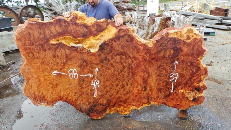 Burl Wood Slab