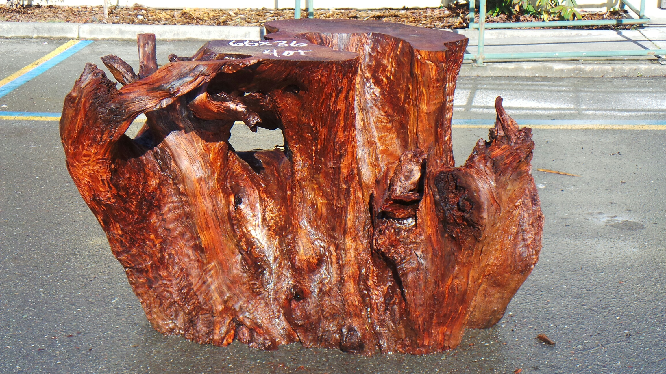 Tree Stump Table Base - Redwood Branch Table Base - Rustic Burl Wood