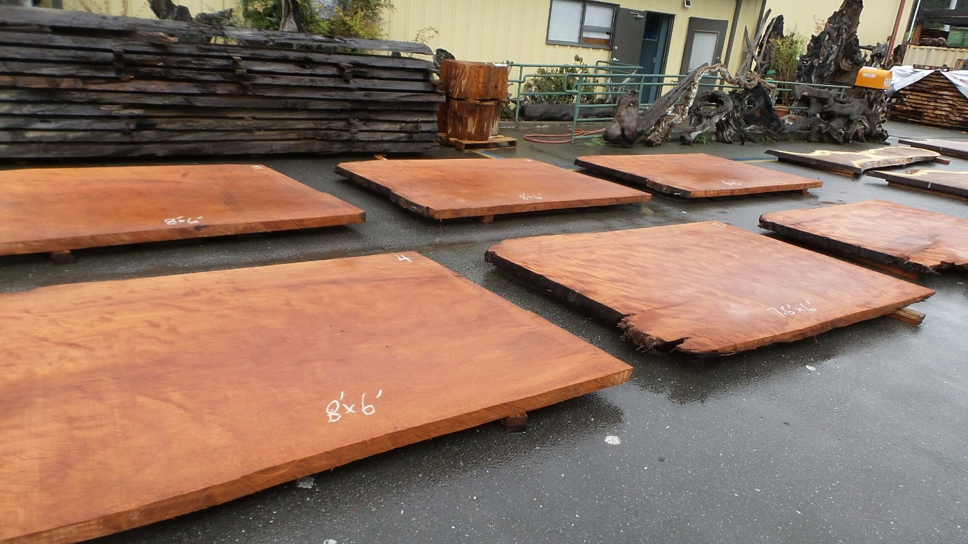 Old Growth Redwood Burl Blank Wood Slabs For Projects, Design And DIY