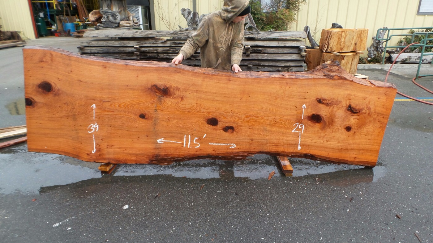 Salvaged Fallen Redwood Slabbed Tree Trunk - Horizontal Cut Table Top, Rustic Raw Wood Countertop, Real Tree Bartop