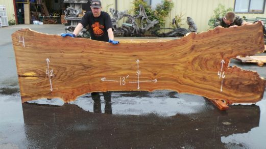 Rustic Live Edge Elm Slab from Log