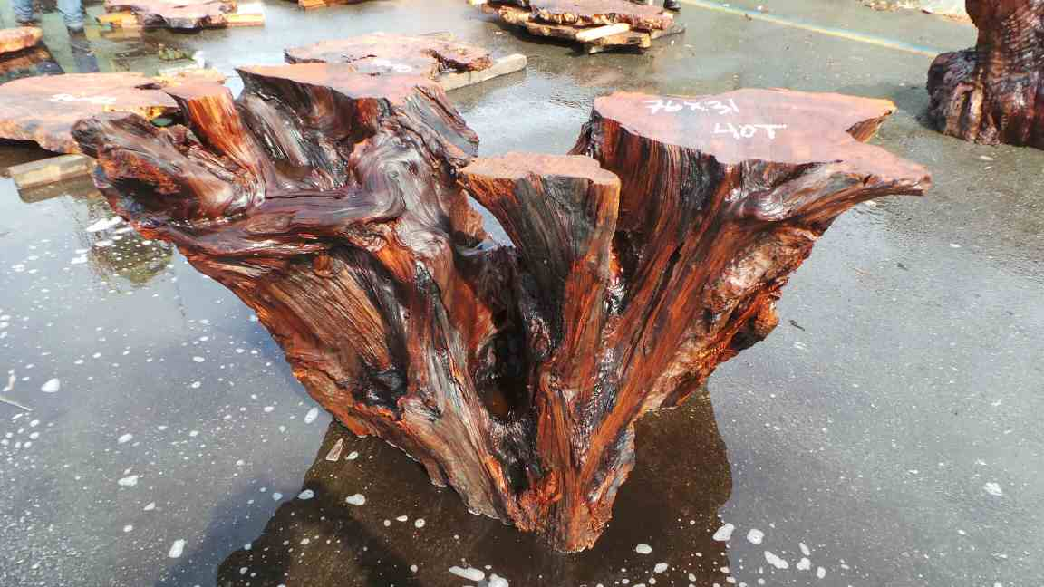Redwood stump Tree Branch Kitchen Table
