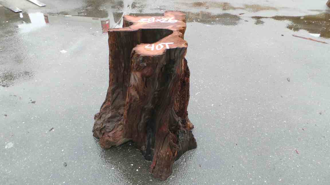 Redwood Stumps Table Base Rustic End Table