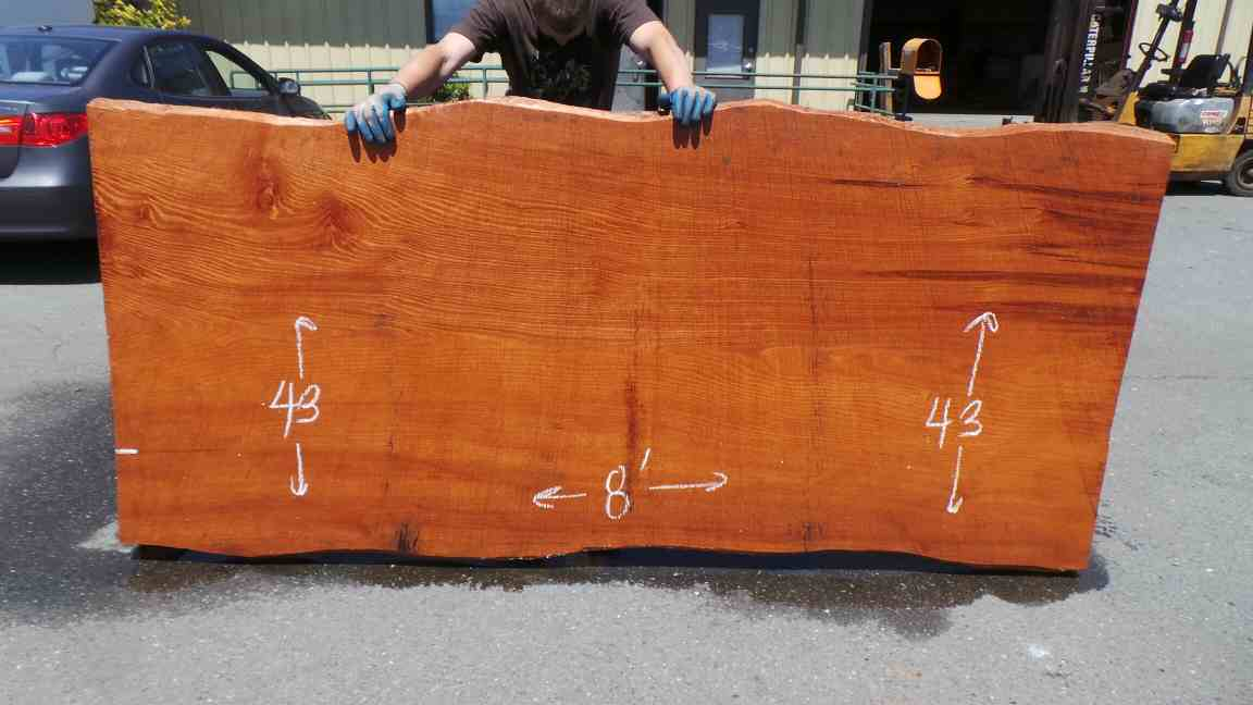 Burl wood tabletop or bartop slab