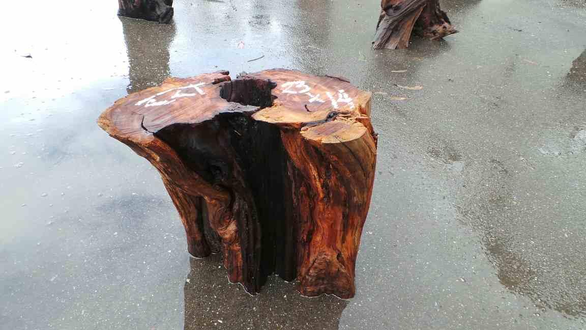Redwood wood slice coffee tables
