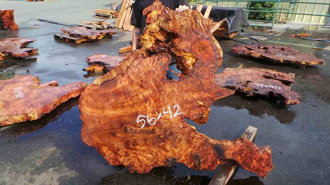 Highly figured live edge redwood burl slab