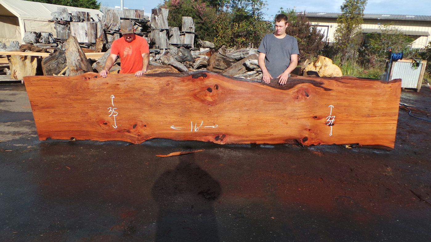 Giant Redwood Raw Wood Slab for Floating Wood Slab Sink or Bathroom Vanity